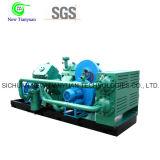 2.2-21MPa de Vergeldende Compressor van de Zuiger van het Aardgas van de Gasdruk