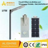 éclairage 15W solaire avec la lampe extérieure de jardin de la batterie LiFePO4