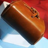 Mode du sac à main de 2017 femmes neufs et tendance (4520)