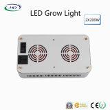 고전 유형 2*200W LED는 상업적인 경작을%s 크리 사람 칩에 가볍게 증가한다