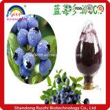 Volume fresco natural do pó da uva-do-monte da fonte de Ruizhi