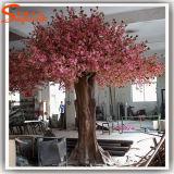 En el exterior un gran árbol de cerezos en flor artificial