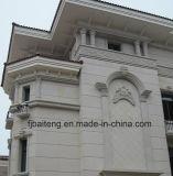 Fournisseur d'or de revêtement de mur de granit de Chine