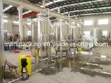 Ro-Trinkwasser-Behandlung-System beenden