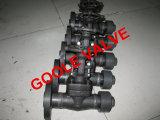 L'acciaio forgiato API602 pulisce la valvola di campionatura (GADV11Y)