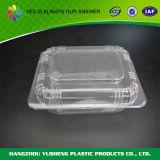 실제적인 플라스틱 명확한 투명한 수집 콘테이너 상자 저장 상자