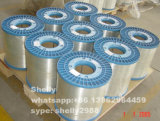 0.64mm-1.0mm Electro  Galvanized  Wire  (Staple  ワイヤー) MPa100