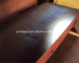 La película común del dedo hizo frente a la madera contrachapada para la construcción/el color negro de /Brown