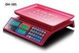 Elektronischer Preis-rechnenschuppe Dh-585