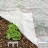 UV를 가진 폴리프로필렌 농업 비 길쌈된 직물