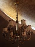 Высокое качество жизни / зал заседаний, утвержденном CE медных подвесной светильник