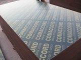 建築材用のフィルムに直面合板