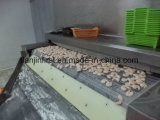 Pizza ou massa de pão congelada IQF rápida do congelador do túnel da fonte da fábrica para a corrente
