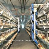 Poultry automatico Cage Farm per Broiler e Layers