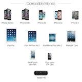Haltbarer heißer verkaufenkabel-Blitz für Ihre Apple-Einheiten