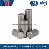 Nouvel axe du vérin de la plus haute qualité en acier inoxydable 316 broche parallèle