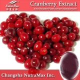 Cranberry Extract Proanthocyanidins 25%30%