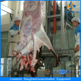 Bestiame Hide Removal Equipment in Cattle Slaughterhouse