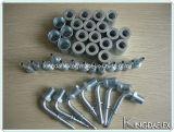 メートル女性糸はステンレス鋼のホースフィッティングを造った