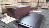 ブラウンのポプラのコアフィルムによって直面される閉める合板の建築材料(15X1220X2440mm)