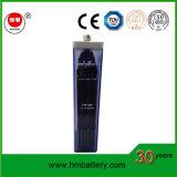 Nickel-Eisen-Batterie der Qualitäts-lange Lebensdauer-tiefe Schleife-Solarbatterie-12V 100ah Nife
