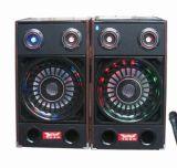단계 Bluetooth 직업적인 DJ 스피커 F238