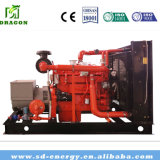 gruppo elettrogeno del gas naturale 500kw