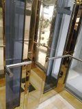 Elevatore Gearless della villa della casa della trazione dell'azionamento di Vvvf con tecnologia tedesca