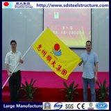 Prédio de aço do Prédio Prédio Sale-Steel Products-Seel recordações