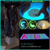 """12 """" 원격 제어와 재충전 전지를 가진 LED 색깔 공"""