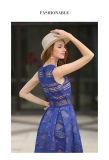 상한 레이스 구렁 소매 없는 파란 여자 복장
