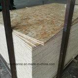 Pegamento ambiental de los materiales de construcción OSB 15m m