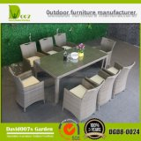 Rotin/jeu extérieur en osier de meubles de patio de jardin