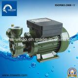 Bomba eléctrica del agua potable de Wedo dB-550A para el hogar y la agricultura (0.75HP)