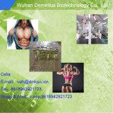 Испытание Isocaproate /Testosterone Isocaproate CAS порошка самого лучшего качества Китая сырцовое: 15262-86-9