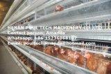 H Тип Автоматический уровень куриные каркас для плат оборудование для птицеводства питателя