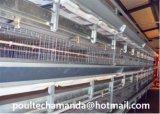 Автоматическая клетка горячих/холодной гальванизации батареи бройлера цыпленка для быть фермером горячий продавать (тип рамки h)