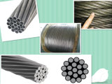 Qualitäts-preiswerter Preis-Stahldraht in der Masse/in galvanisiertem Stahldraht-Strang