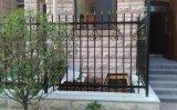 優雅な様式の鉄の網によって電流を通される金属の塀