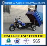 Fl150zh-e de Volledige Motorfiets van de Lading van het Wiel van de Kwaliteit 150cc 3 van China van het Geluk
