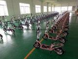 中国の工場卸売のFoldableフレーム300Wが付いている小型電力のスクーター