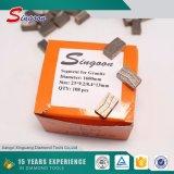 Diamant-Segmente des silberne Farben-natürliche Stein-1600mm