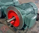 0.12kw - motore a corrente alternata Di 200kw Tefc Ie2 Ie3