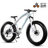 """26 """" سمين إطار العجلة جبل درّاجة مع 21 سرعة"""