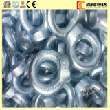 Noix de levage M5 d'oeil de l'acier inoxydable DIN582 d'ISO9001 AISI316