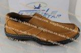 De Toevallige Schoenen van mensen (NS2002)