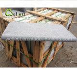 Горячая продажа природных серого гранита Bullnose Flamed поверхность кромки бассейна справиться