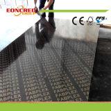 Poplar Eucalyptus Hardwood Core Film Contreplaqué pour construction