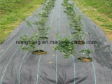 De Mat van het Onkruid van pp voor Gras kweekt Controle