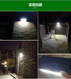 고아한 디자인 타원 최고 질에 있는 태양 벽 LED 램프 빛